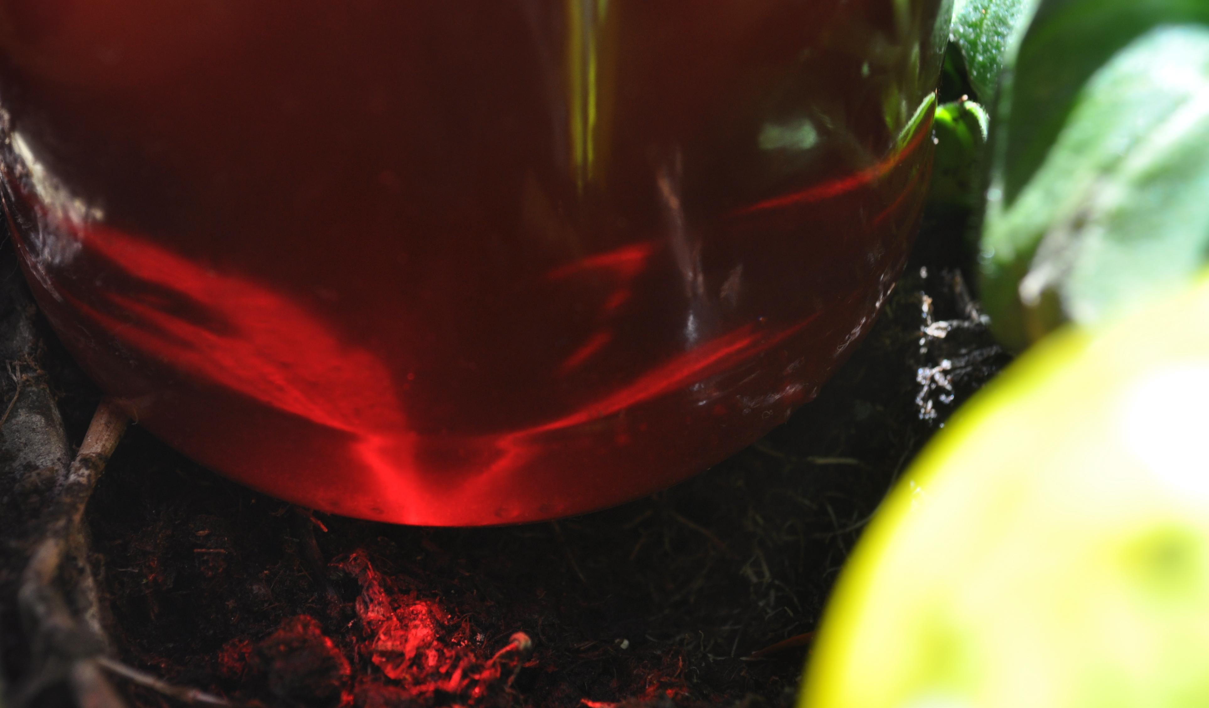 Wunderbares Heilöl- selbstgemacht